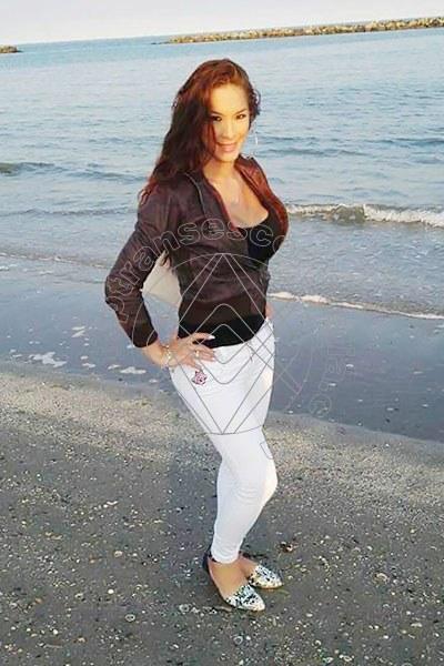 Sarita Barbie NOVARA 3284597402