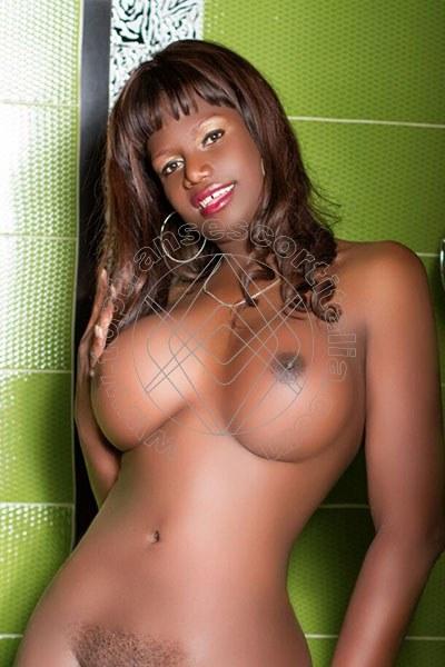 Melissa Trans NAPOLI 3458706366